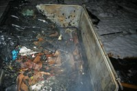 Burnt contents of the wheelie bin