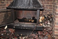 Wood kept close to the wood burner caught fire